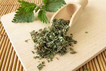 Chinchin furbaby nutrition