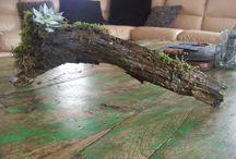 creagreen / Allerlei leuke manieren om je plantjes te displayen.