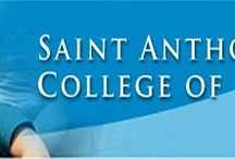 Christian Colleges & Schools