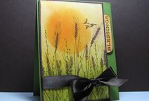 Cards 2 / by Rosemary Emerick