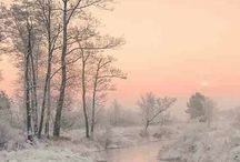 Foto's Winter Landschap