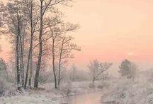 Foto's Winter Landschap