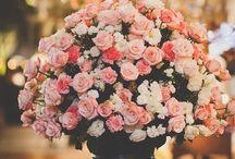 jarros e flores