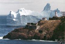 Newfoundland Trip