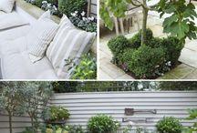 Giardinaggio & dintorni