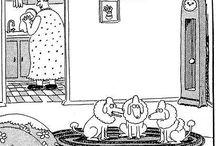 Doggone Funny - The wild world of animal antics