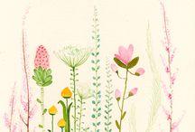 watercolor / by Harriet Hensley