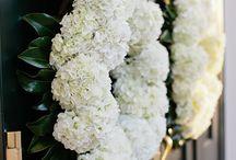 Weddings / by Betsy Farmer