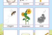 Project bijen