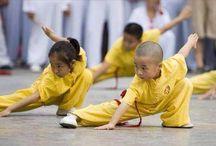 Martial Arts / Martial Art