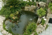 jardines pequeños con estanques