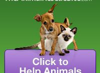 IT'S FREE TO GIVE & IT'S GOOD FOR YOU TOO!!! / JUST CLICK ONCE DAILY TO HELP PROVIDE FOOD, SHELTER, MEDICAL, HOME FOR A HOMELESS PET.  Maybe a little more if you can but, the click is FREE!!!