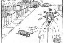 Humor / by Rowena Bourque