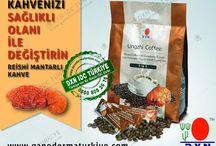 dxn, ganoderma, reishi, selcan bağcı, www.ganodermaturkiye.com, kahve