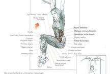 Exercises core