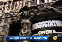 Trieste video