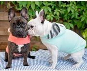 We ❤️ frenchies