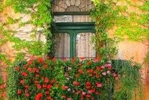 Windows / by Barbara Collin