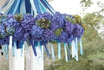 Wedding Ideas / by Cecilia M A Carter