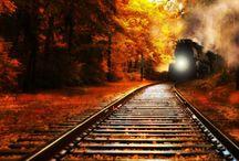 TRAIN / TRAIN TRACK