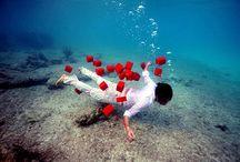 Underwater / by Elena Clarke