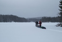 Algonquin Park Camping and Canoeing
