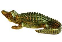 All things alligator-ish