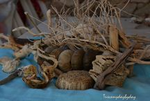 Driftwood / drifwood creations, on the seashore, to be trasformed into...