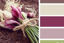 Pics & colors