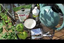 Gardening-Organic