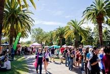 Events, Clubs & Societies at UQ