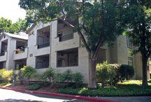 San Ramon Real Estate / by Luke Middendorf