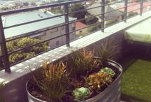 Just Gardens Landscaping / www.just-gardens.co.za A landscaping company in Cape Town
