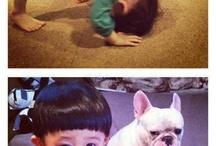 Animals I love / Pets species and cuteness