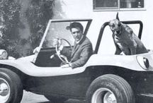 Buggy Cars