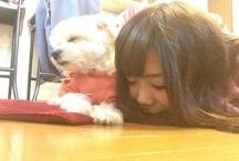 my pet Milk♡