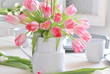 Tulips!!! ❤️