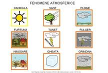 FENOMENE