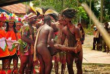 lovepapua.com / Berbagi cerita suka duka rakyat Papua.