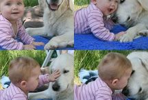 Dog n kids / Loving animal