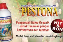 Pupuk Organik Pestona