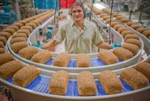 BreadQuarters / by Dave's Killer Bread