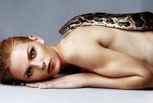 Snake on white / by Katie K