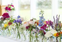 Meagan's Wedding