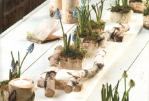 Cowgirl Home Decor / Decor and design ideas to refresh your home for the new season! / by Cowgirl Magazine