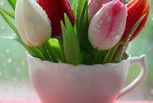 virágkompozició