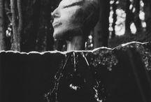 La plume plongea la tête by Sara Palmieri /