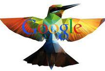 google / google obrazky
