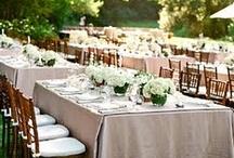 Wedding / by Jamie Kline-Garcia
