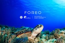 Save the Sea / As a beauty innovator, FOREO is committed to creating sustainable skin care choices and supporting environmental conservation. FOREO partnered with Greenwave and Sea Life Trust in 2015 to build restorative ocean farms and sponsor endangered sea turtle rehabilitation and research. Partner with us for even bigger impacts this year!